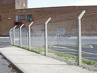 Galvanised chain link fencing on concrete posts