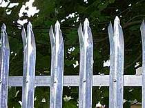 Galvanised triple pointed D profile palisade fence pales